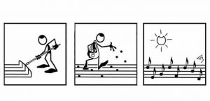 music-seeds