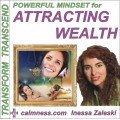 Attracting Wealth MP3